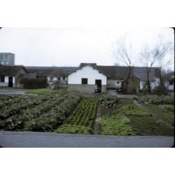 La Chine de 1974 vue par Roland Barthes : pays ou paysage ? de Qingya Meng (text in french)