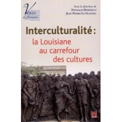 Interculturalité: la Louisiane au carrefour des cultures : Chapter 9