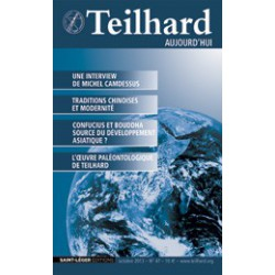 Revue Teilhard de Chardin Aujourd'hui N°47 : Introduction